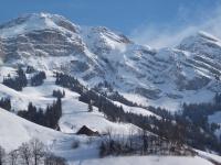 szwajcaria6